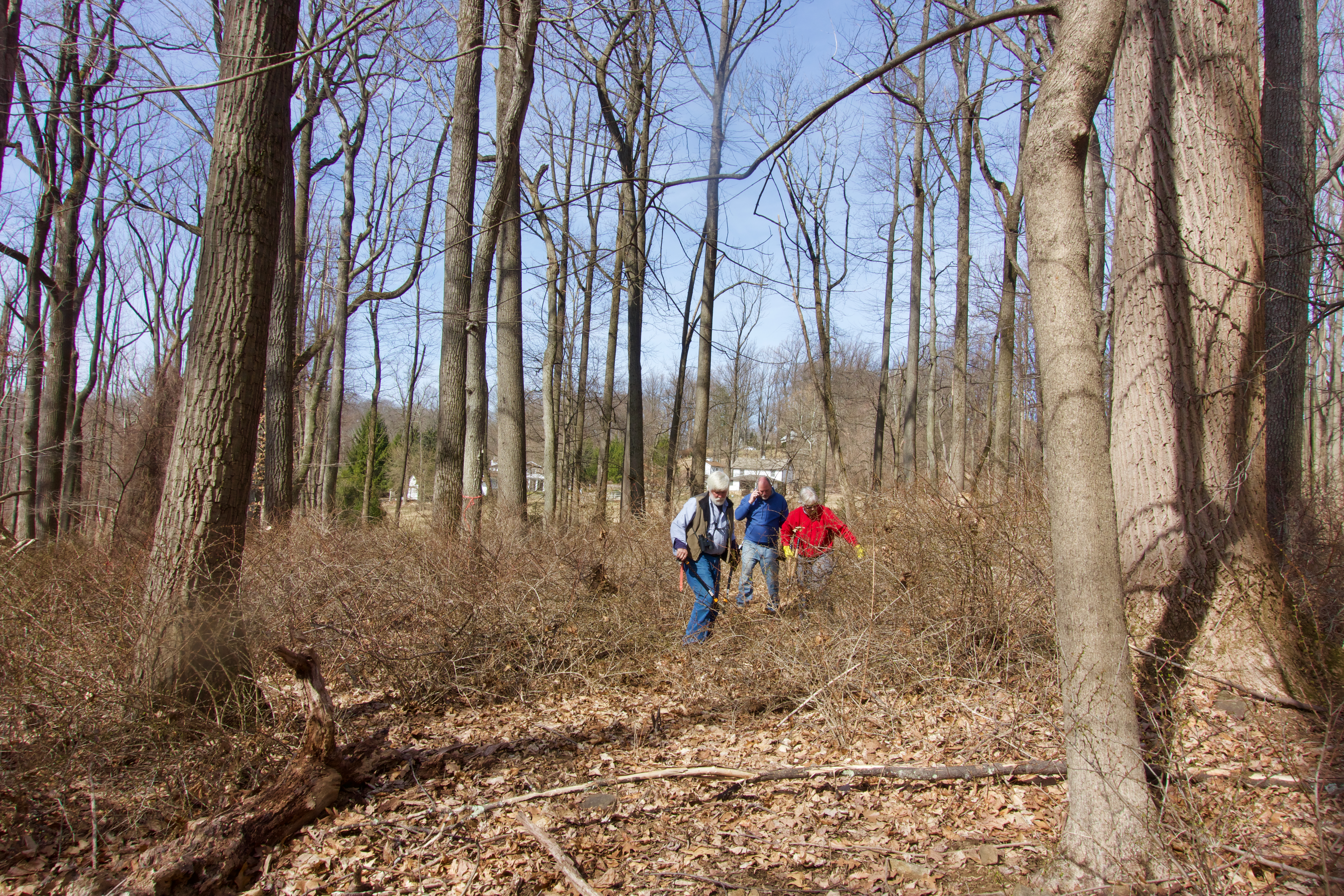 Improving Your Trails and Natural Areas