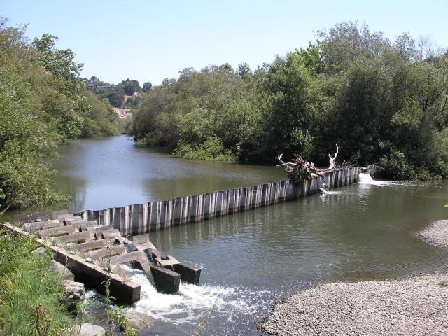 Bob Jones Trail, Marre Dam
