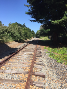 A bit rough, but the rail corridor in SC county is the safest way to move around our community.