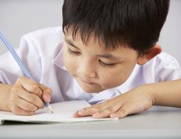 Schools: Vision of the Future