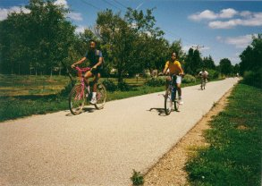 Building a Bike Friendly Community in Bloomington