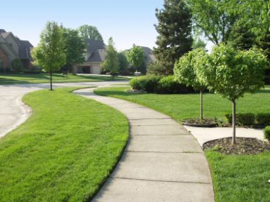 Neighborhood Plan: Canyon View, Orchard & Cascade Sidewalks
