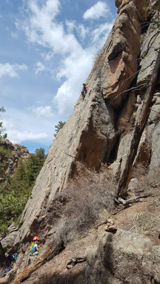 The kiddos out climbing near Radio Head