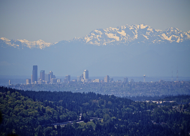 What should King County's environmental goals be?