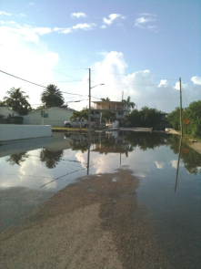 Key West 11th St. Flooding