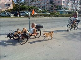 Prioritizing Transportation Needs