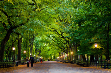 This is a photo of a street in the world famous Central Park in New York City.