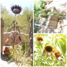 A peaceful stroll through The Tohono Chul Garden.