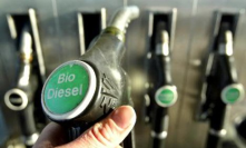 Recycle cooking oil from restaurants, turkey fryers and home kitchens.