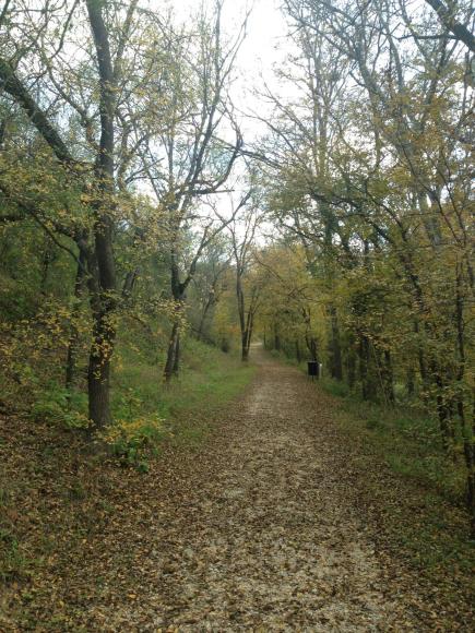 Enjoying nature's beauty and fall colors at Medina River Natural Area in December 2014.