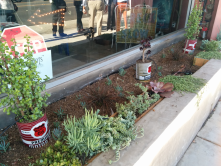 Creative use of recycled materials for planting at a home decor shop on Lincoln